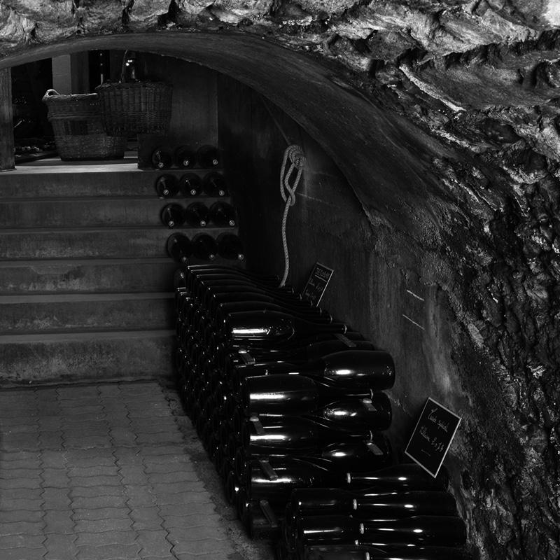 champagne-joly-domaine-di-champagne-vino-spumante-cantina-botti-bottiglie